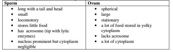 Vprašanja in odgovori iz biologije 3. obrazec - Srednješolski izpiti iz biologije-9400