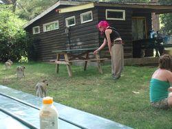Kenya Volunteers Project 37