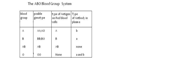 Biology Notes Form 4 PDF | Biology Form 4 Questions and