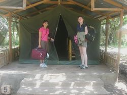 physiotherapy electives students take a safari in Kenya