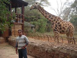 Kenya Volunteers Project 18
