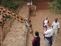 Kenya Volunteers Project 19