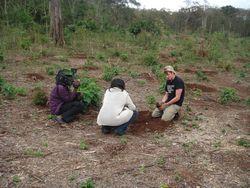 Kenya Volunteers Project 31