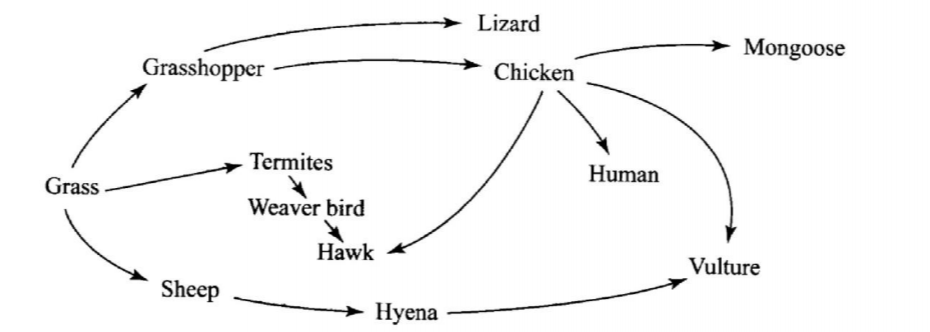 Food web in KCSE Biology Past Paper 1 2016