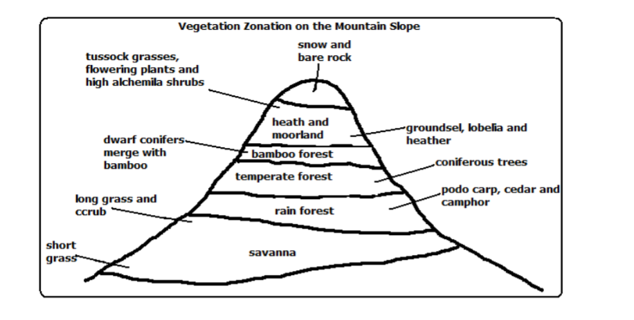 Geography Notes Form 2 - Free Download - KCSE Revision Notes PDF